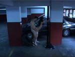 Las cámaras de seguridad y sexo al paso